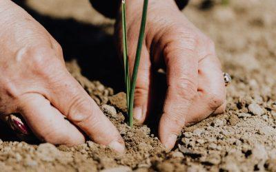 UCCL tacha de decepcionante la falta de acuerdo en la definición de agricultor activo en la PAC