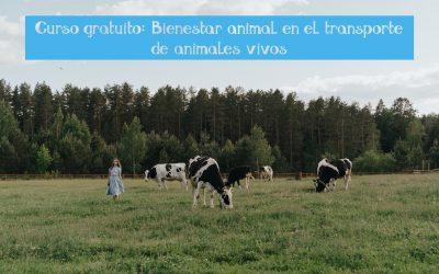Curso gratuito: Bienestar animal en el transporte de animales vivos