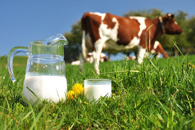 Unión de Uniones se moviliza para evitar más cierres de granjas de vacuno de leche por el abuso de la distribución