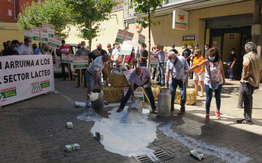 Los ganaderos protestan en Valladolid para exigir un precio digno por su producción y culpa a la distribución de malvender su leche