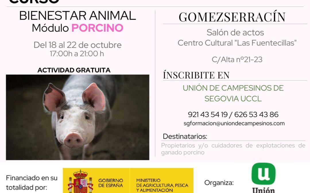 CURSO BIENESTAR ANIMAL PORCINO. GOMEZSERRACÍN. SEGOVIA. 18 al 22 de Octubre de 2021